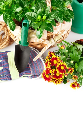 garden equipment with flowers and green plants isolated on white background Stock Photo - 9222639