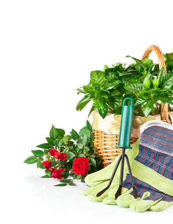 garden equipment with flowers and green plants isolated on white background Stock Photo - 9222637