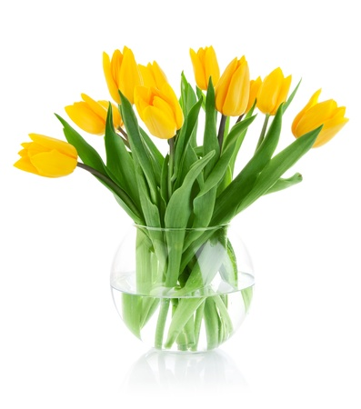 yellow tulip flowers in glass vase isolated on white background 스톡 콘텐츠