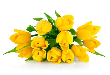 Gele tulp bloemen boeket geïsoleerd op witte achtergrond Stockfoto - 9407905