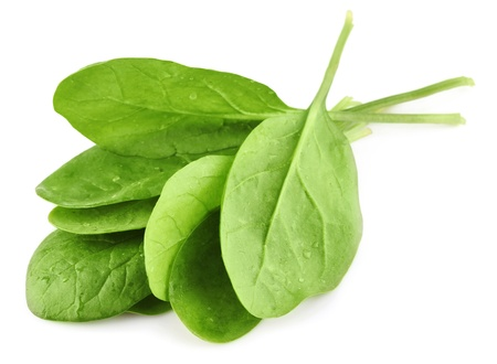 fresh spinach: green leaves of spinach isolated on white background