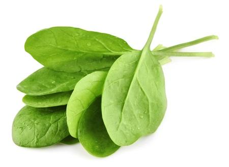 espinacas: las hojas verdes de espinaca aisladas sobre fondo blanco