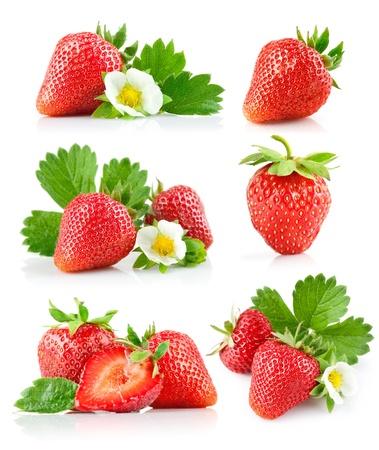 fresa: berry fresa con hojas verdes y flores aisladas sobre fondo blanco