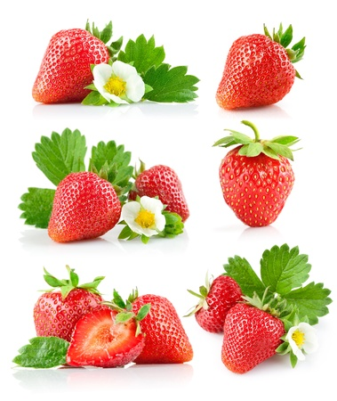strawberry berry with green leaf and flower isolated on white background Banco de Imagens