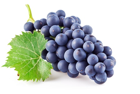grapes on vine: blue grapes with green leaf isolated on white background