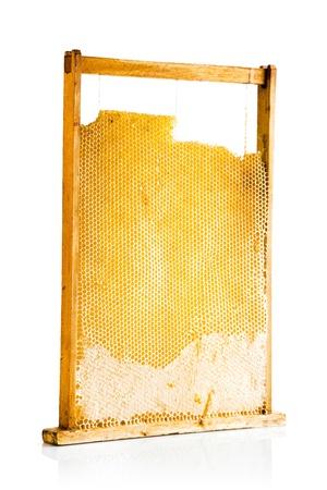 sweet honey in honeycomb isolated on white background photo