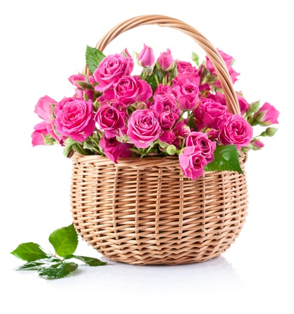 bouquet of pink roses in basket isolated on white background Stockfoto
