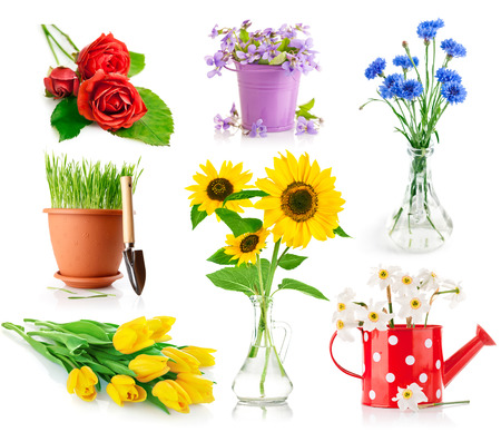 set bouquet flowers in vase and pot isolated on white background photo
