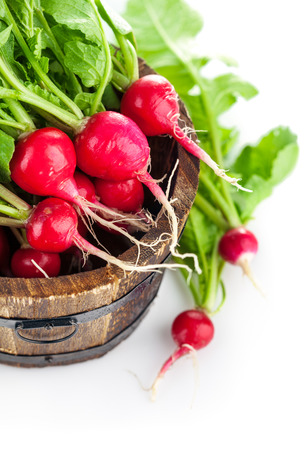 fascicle: Vegetables fresh radish in wooden bucket. Isolated on white background