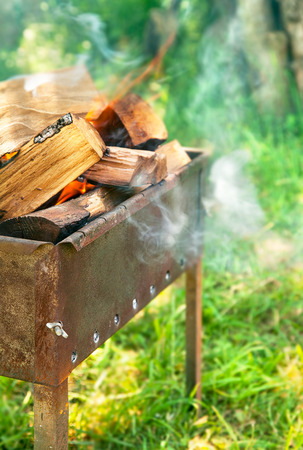 brazier: Burning firewood in brazier on green and sunny  lawn