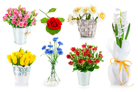 yellow roses: Set bunch of garden flowers. Isolated on white background