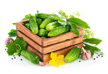 Fresh cucumbers in wooden box with green leaf and flower. Isolated on white background photo