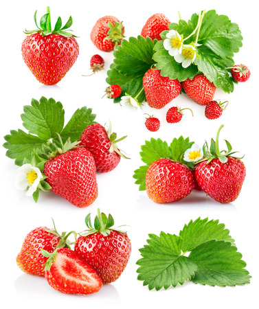 strawberry plant: Set berry strawberry with leaves and flowers. Isolated on white background