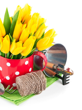Spring flowers tulip with garden tools. Isolated on white background Stock Photo
