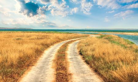 meandering: Meandering road to sea