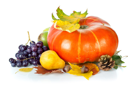 Autumnal still life with pumpkin and grapes. Isolated on white background