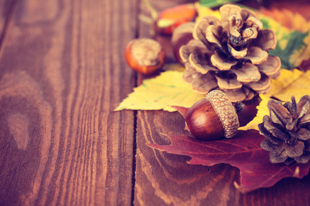 acorn: Autumnal still life with acorn pinecone and yellow leaves on wooden board