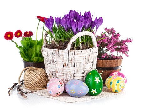 flowering: Easter eggs with spring flowers in basket. Isolated on white background