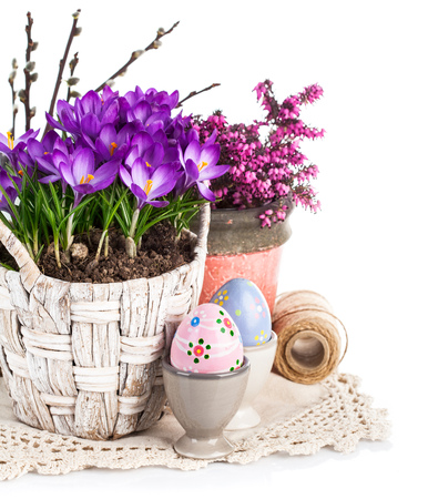 easter flowers: Easter eggs with spring flowers in basket. Isolated on white background