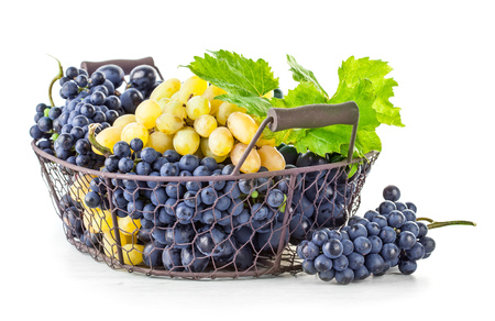 willow fruit basket: Basket blue and white grapes with green leaf, isolated on background