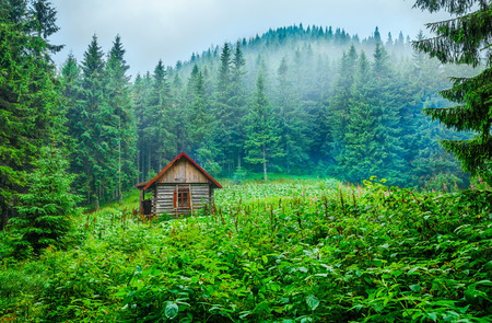Lonely ecological wooden house, blockhouse shelter at green glade in green foggy pine forest among mountains and misty clouds. Carpathians mountains landscape.