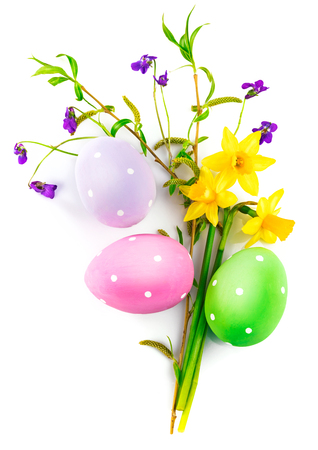 spring leaf: Easter eggs spring flower narcissusviolet green leaf with top view copyspace, isolated on white background.