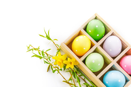 spring leaf: Easter eggs with spring flower green leaf copyspace greeting card, isolated on white background.
