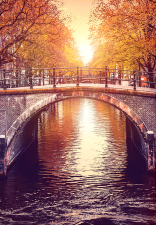 crone: Bridge over channel in Amsterdam Netherlands autumn urban landscape with yellow tree on bank river sunny day old european town.