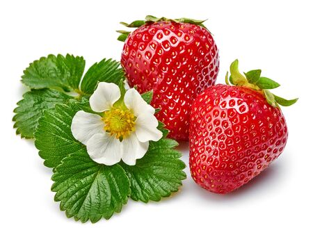 Strawberries with green leaf and flowers, isolated on white Stockfoto