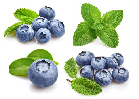 Set Berry Blueberry with Leaf mint. Fruity Still Life for Packing. Stockfoto