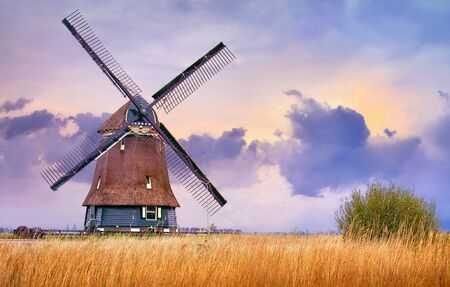 Volendam, Netherlands. Traditional Holland landscape with typical dutch windmill and yellow grass field, evening sunset sky in countryside. Stockfoto