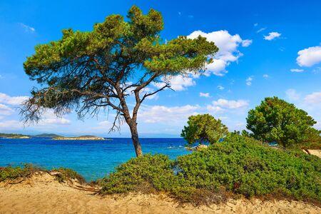 Karidi Beach at peninsula Sithonia, Chalkidiki, Greece. Stockfoto - 130832585