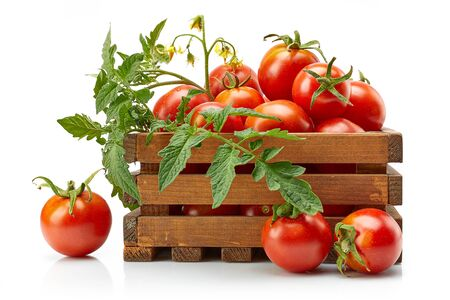 Harvest tomatoes in wooden box with green leaves and flowers on white Stock Photo