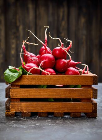 Bunch radish in wooden box at background old board in rustic style. Close-up side view. Harvest fresh organic vegetables.