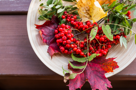 Autumn concept with rowan berry over wooden table.Happy Thanksgiving decor.rustic wooden table. Fall background with seasonal leaves and berries, copy space Stock Photo