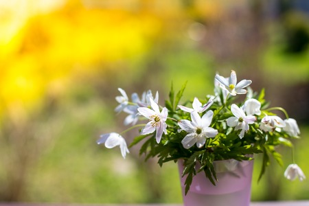 bouquet of beautiful snowdrops in a little vase on nature background ,concept of spring and flowers. snowdrops as symbol for spring.Festive Easter card with snowdrops.Copy space Stok Fotoğraf
