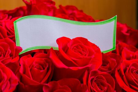 Paper card and roses bouquet - holiday background.red roses with a blank paper card ,symbol for the valentine day, mother day, wedding day or birthday. Marriage proposal. Beautiful bouquet for special event.