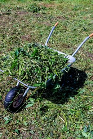 Iron trolley for manual moving of building materials in the garden and in the backyard standing on the lawn. Garden work.dried herbs, grass on wheelbarrow.Copy space.