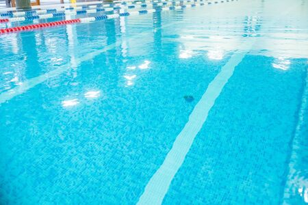 Empty lanes in a swimming pool.Indoor big blue swimming pool interior in modern minimalism style.Lanes of a competition. Healthy life, active sport Reklamní fotografie