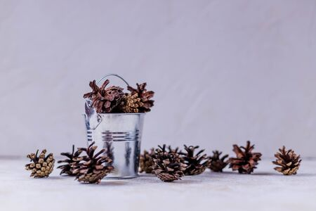 A set of pine cones in a red decorative bucket, isolated on a white background. Cedar cones is a decor and natural food.