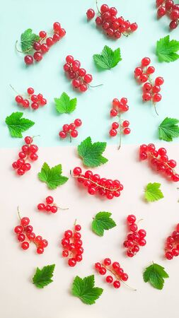 Fruit pattern made of fresh berries and green leaves on white background. Flat lay, top view. 写真素材