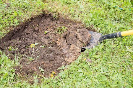 Gardener digging with garden spade in black earth soil