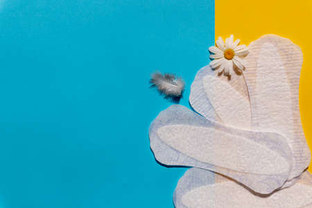 Panty liner with feather, chamomile flowers on bright background. Menstruation and women everyday hygiene concept. Sanitary pads and daisy flower.Woman hygiene protection