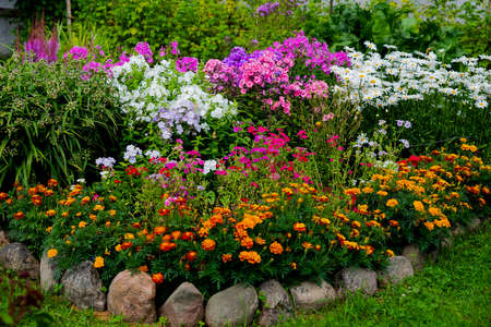 multicolored flowerbed on a lawn. horizontal shot. selective focus.Perennial garden flower bed in spring at flower show.Colorful flower bed with Gazania and Begonia,phloxes