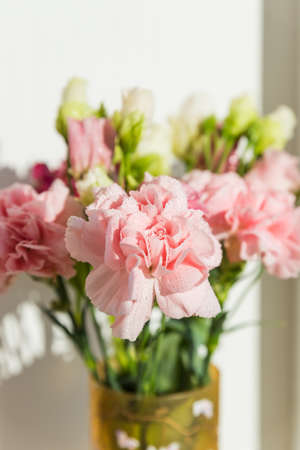sweet pink carnation flowers in vase on a white background with text space.Beautiful fresh blooming tender carnations. mothers day, thanks design concept.