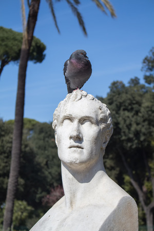 sculptor: In a park in the city center of Rome, there is a statue of italian sculptor Antonio Canova. This time in a company of a pigeon.