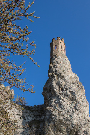 morava: Rocks of the former fortress with a Maiden Tower, part of ruins of castle Devin in Slovakia. Twigs of the early spring tree with small leaves. Bright blue sky. Stock Photo
