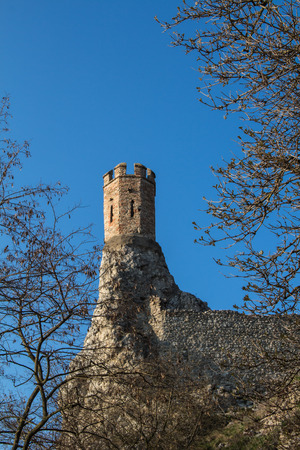 morava: Castle Devin in Slovakia, built on the rocks as a former fortress. Maiden Tower, built on the edge of a slim rock. Tree twigs in foreground. Bright blue sky.