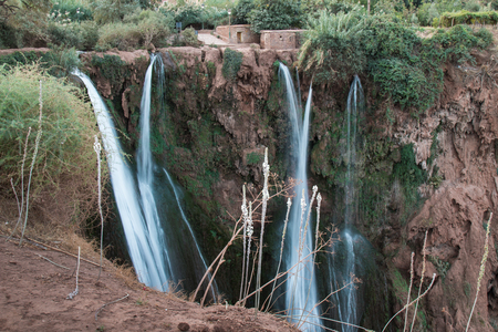 Red color of the mountain with several lines of waterfalls.  Various bushes and trees growing on the mountain. Cascades  Ouzoud, Morocco.