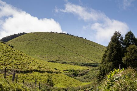 Country on the north of the island, with its fields, meadows and hills, together with trees and plants. White clouds on the spring blue sky. Sao Miguel, Azores Islands, Portugal.